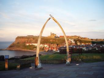 Whitby Whale Bones Photo