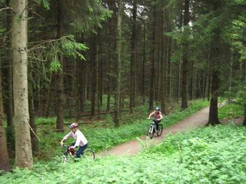 Photo of cyclists in Dalby Forest