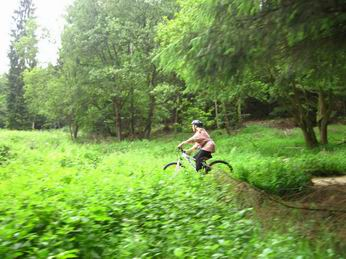 Photo of cyclist in Dalby Forest
