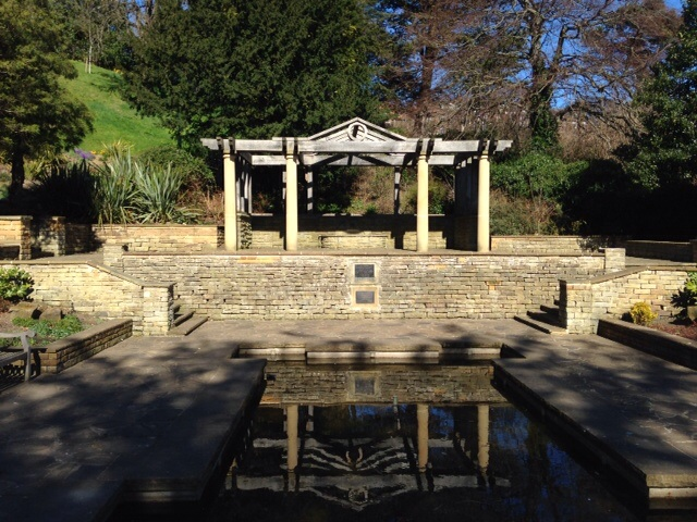 Photo of lily pond at Pannett Park