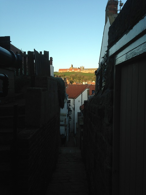 Photo of evening sun in one of Whitby's yards